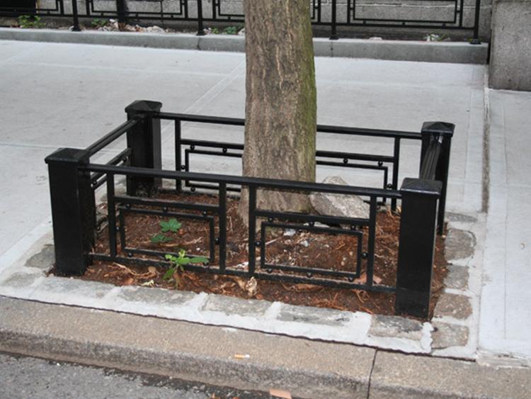 Tree Guards Kaufman
